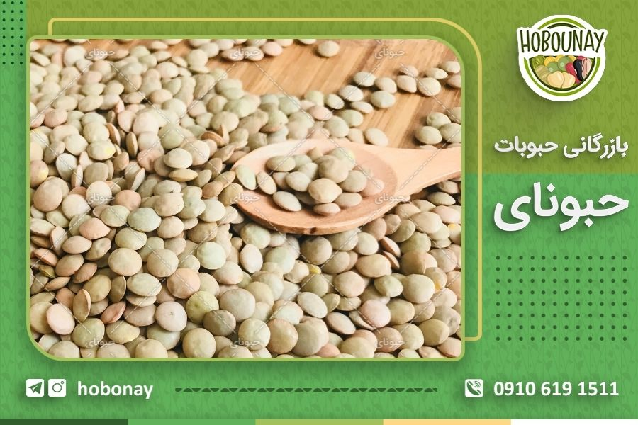 صادرات حبوبات مرغوب ایرانی با شرایط بسیار عالی