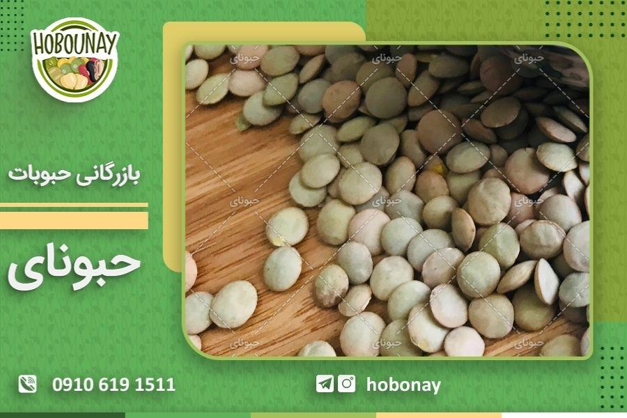 صادرات انواع حبوبات ایرانی