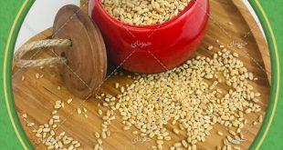 فروش مستقیم از کارخانه حبوبات اصفهان