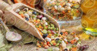 خرید بذر عدس در تناژ بالا